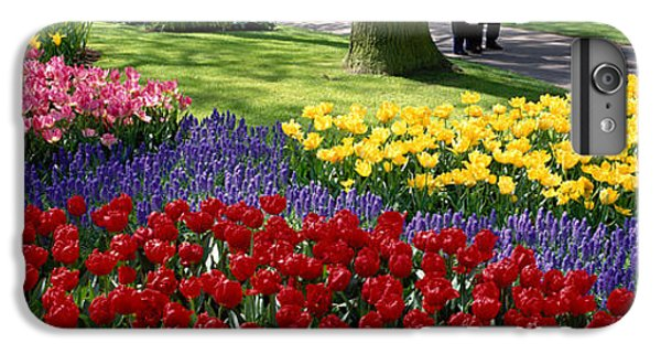 Keukenhof Garden, Lisse, The Netherlands IPhone 6 Plus Case by Panoramic Images