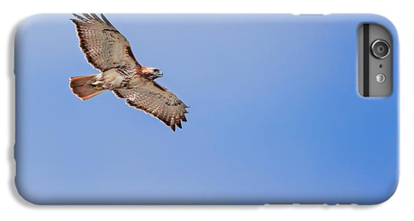 Out Of The Blue IPhone 6 Plus Case by Bill Wakeley