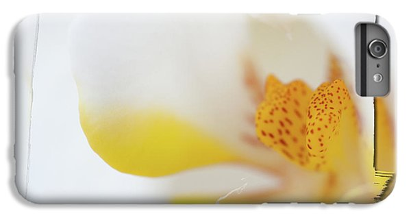 Pure White IPhone 6 Plus Case by Sebastian Musial