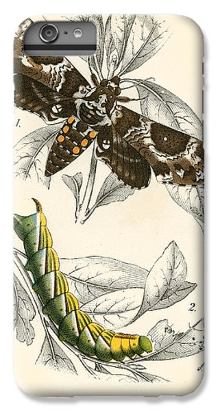 Butterflies IPhone 6 Plus Case