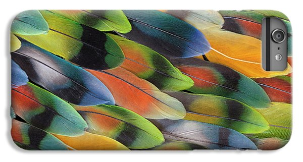 Lovebird Tail Feather Pattern And Design IPhone 6 Plus Case