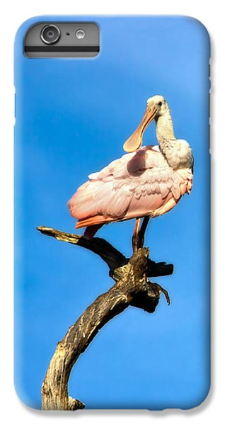 Roseate Spoonbill IPhone 6 Plus Case by Mark Andrew Thomas