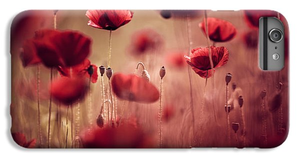Flowers iPhone 6 Plus Case - Summer Poppy by Nailia Schwarz