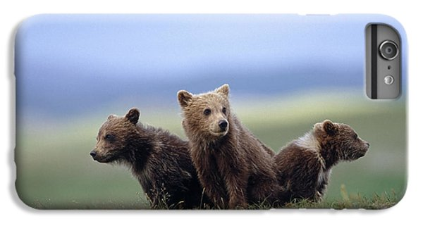 4 Young Brown Bear Cubs Huddled IPhone 6 Plus Case by Eberhard Brunner