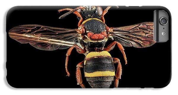 Cuckoo Bee IPhone 6 Plus Case