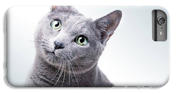 Cats iPhone 6 Plus Case - Russian Blue Cat by Nailia Schwarz
