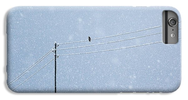 Raven iPhone 6 Plus Case - A Long Day In Winter by Uschi Hermann
