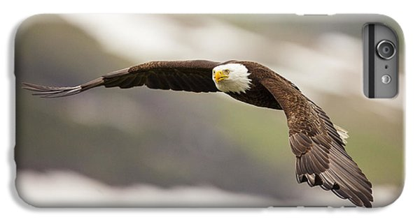 Condor iPhone 6 Plus Case - A Mature Bald Eagle In Flight by Tim Grams