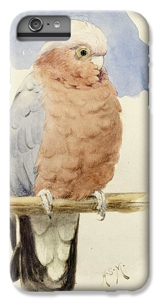 Cockatoo iPhone 6 Plus Case - A Rose Breasted Cockatoo by Henry Stacey Marks