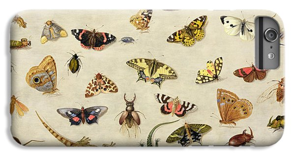 A Study Of Insects IPhone 6 Plus Case