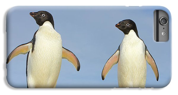 Adelie Penguin Duo IPhone 6 Plus Case by Yva Momatiuk John Eastcott