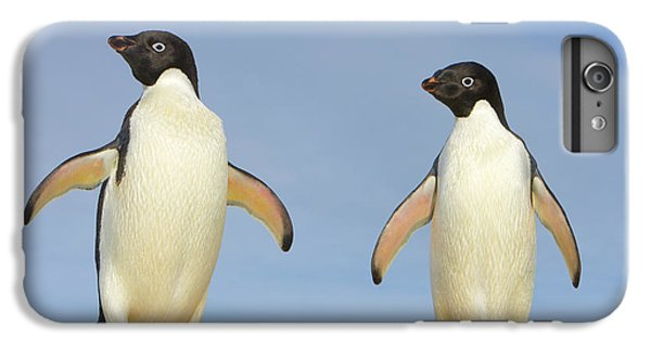 Adelie Penguin Duo IPhone 6 Plus Case by Yva Momatiuk John Eastcott