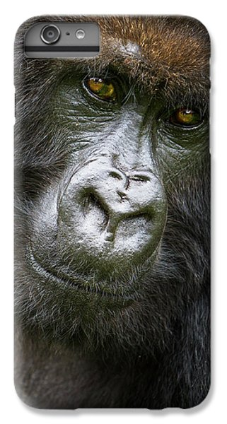 Africa Rwanda Female Mountain Gorilla IPhone 6 Plus Case by Ralph H. Bendjebar
