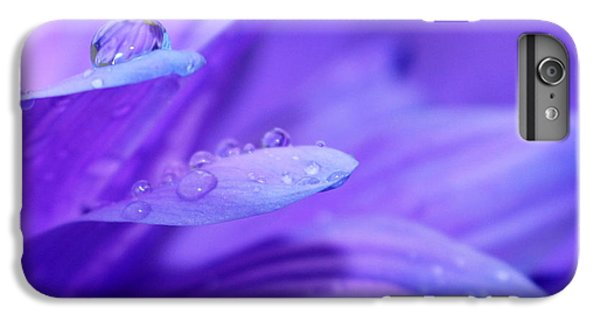 After The Rain IPhone 6 Plus Case by Krissy Katsimbras