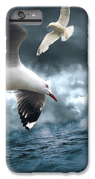 Albatross IPhone 6 Plus Case by Linda Lees