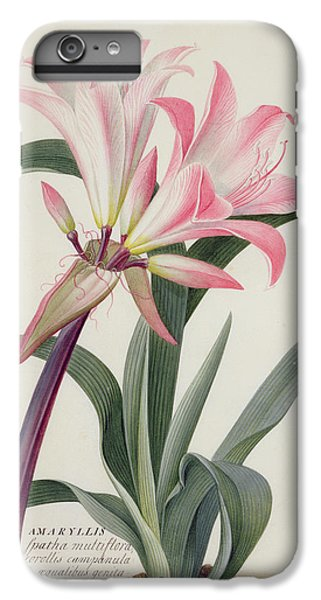 Lily iPhone 6 Plus Case - Amaryllis Belladonna, 1761 by Georg Dionysius Ehret