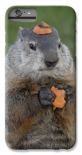And Have You Looked In The Mirror Lately IPhone 6 Plus Case by Paul W Faust -  Impressions of Light