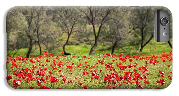 At Ruchama Forest Israel IPhone 6 Plus Case