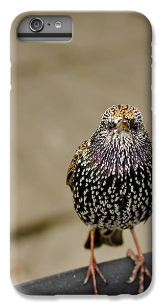 Angry Bird IPhone 6 Plus Case by Heather Applegate