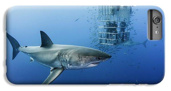 Animals In Cage IPhone 6 Plus Case