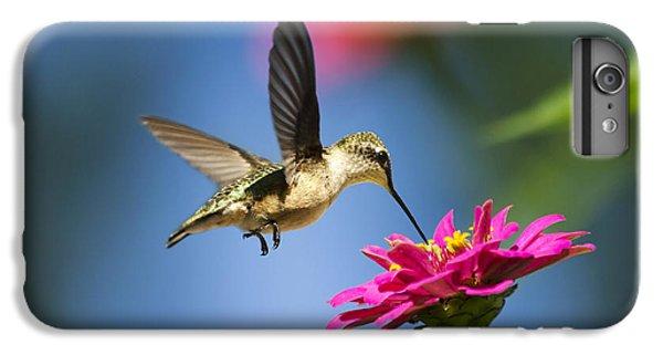 Art Of Hummingbird Flight IPhone 6 Plus Case by Christina Rollo