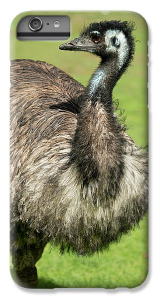 Emu iPhone 6 Plus Case - Australia, South Australia, Adelaide by Cindy Miller Hopkins