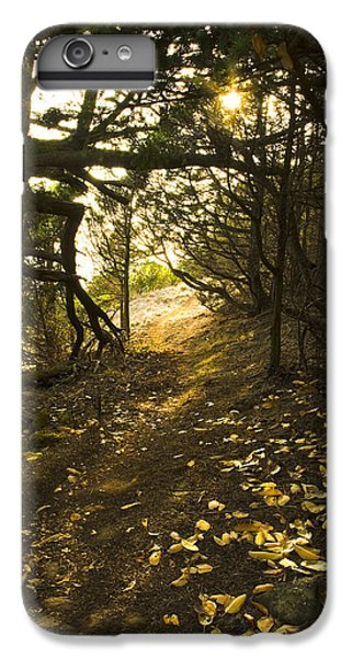 IPhone 6 Plus Case featuring the photograph Autumn Trail In Woods by Yulia Kazansky