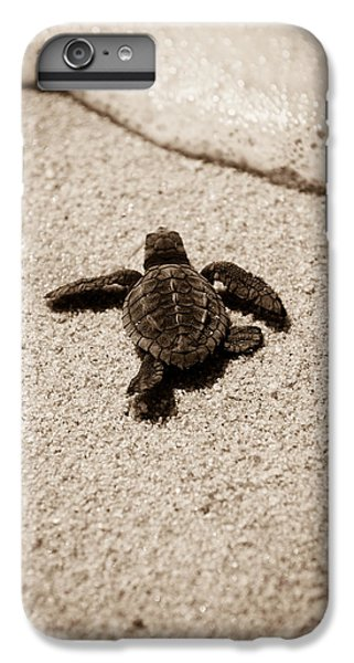 Baby Sea Turtle IPhone 6 Plus Case by Sebastian Musial