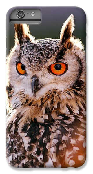 Owl iPhone 6 Plus Case - Backlit Eagle Owl by Roeselien Raimond