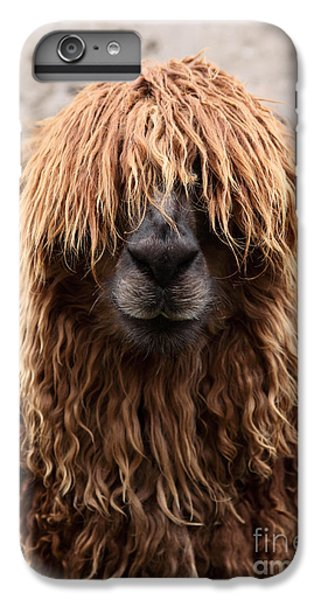 Llama iPhone 6 Plus Case - Bad Hair Day by James Brunker