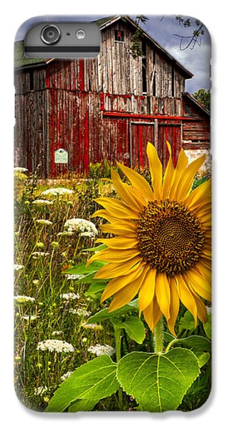 Sunflower iPhone 6 Plus Case - Barn Meadow Flowers by Debra and Dave Vanderlaan