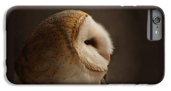 Owl iPhone 6 Plus Case - Barn Owl 3 by Ernie Echols
