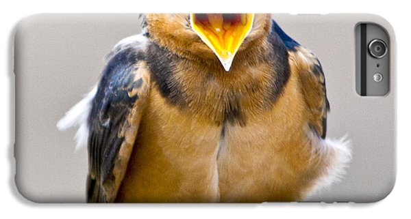 IPhone 6 Plus Case featuring the photograph Barn Swallow by Ricky L Jones