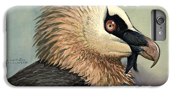 Vulture iPhone 6 Plus Case - Bearded Vulture by Dreyer Wildlife Print Collections