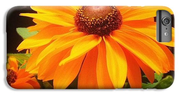 Beautiful iPhone 6 Plus Case - Beautiful Flower #iphone5 #instagram by Scott Pellegrin