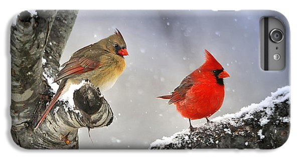 Beautiful Together IPhone 6 Plus Case