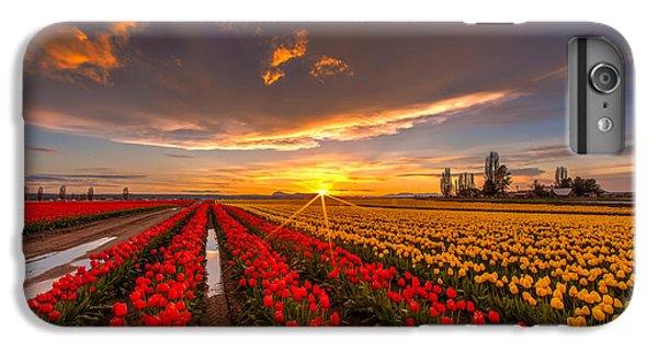 Beautiful Tulip Field Sunset IPhone 6 Plus Case