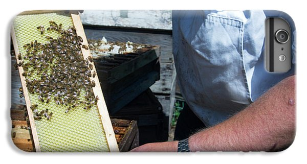 Honeybee iPhone 6 Plus Case - Beekeeper Holding A Brood Frame by Louise Murray/science Photo Library