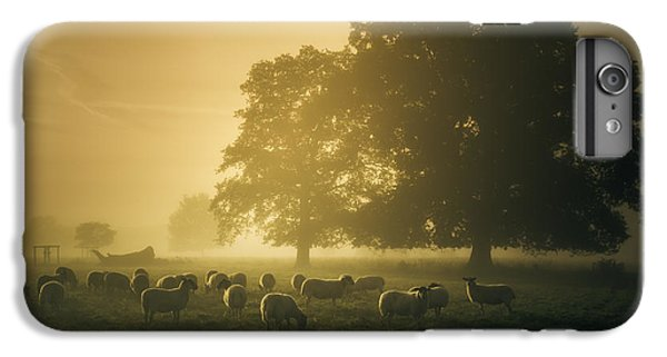 Before Dawn Gathering IPhone 6 Plus Case by Chris Fletcher