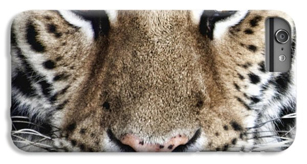 Bengal Tiger Eyes IPhone 6 Plus Case by Tom Mc Nemar