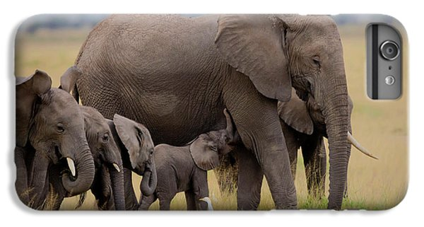 Africa iPhone 6 Plus Case - Big Family by Young Feng