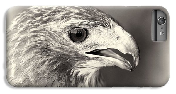 Bird Of Prey IPhone 6 Plus Case by Dan Sproul