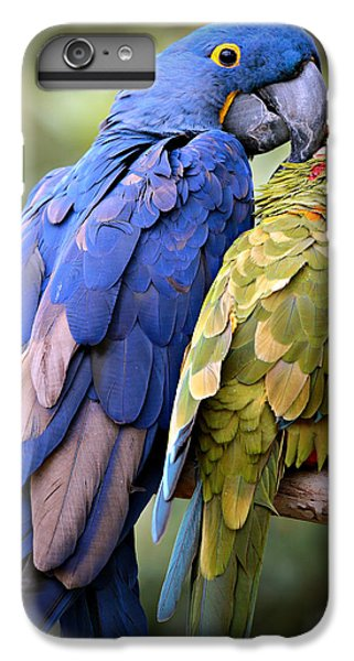 Macaw iPhone 6 Plus Case - Birds Of A Feather by Stephen Stookey