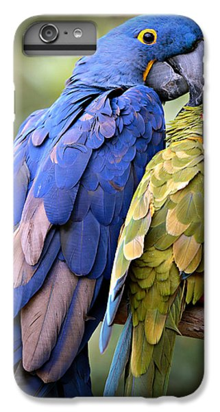 95e76fcb9f Amazon Parrot iPhone 6 Plus Case - Birds Of A Feather by Stephen Stookey