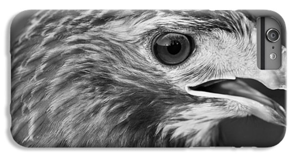 Black And White Hawk Portrait IPhone 6 Plus Case by Dan Sproul