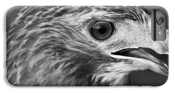 Black And White Hawk Portrait IPhone 6 Plus Case by Dan Sproul