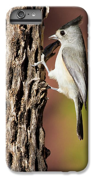Titmouse iPhone 6 Plus Case - Black-crested Titmouse (baeolophus by Larry Ditto
