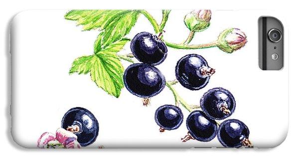 IPhone 6 Plus Case featuring the painting Blackcurrant Botanical Study by Irina Sztukowski