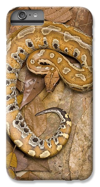 Blood Python IPhone 6 Plus Case