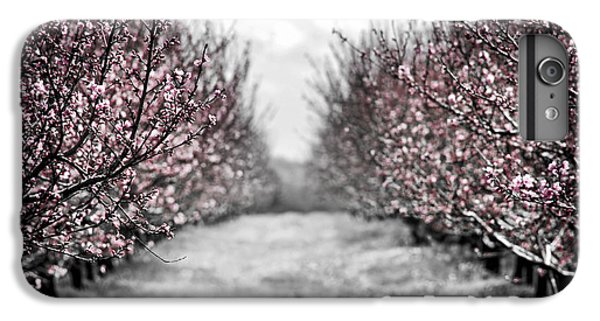 Blooming Peach Orchard IPhone 6 Plus Case by Elena Elisseeva